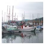 Express Travel & Tour Ltd: Nova Scotia Tours